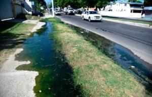Denuncian salen aguas residuales en un tramo de la avenida Yapur Dumit