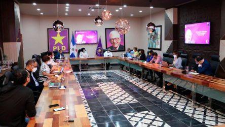 PLD elegirá este domingo presidente, secretario general y su comité político