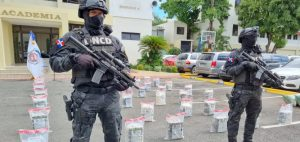 Samaná: DNCD ocupa 456 paquetes cocaína en una finca de Las Galeras