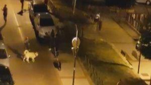 MADRID: Dominicano apuñala joven durante una pelea entre dos bandas