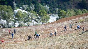 Medio Ambiente prohíbe de manera permanente agropecuaria Valle Nuevo