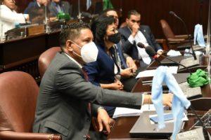 Diputados aprueban a unanimidad reconocimiento a Milagros Ortiz Bosch