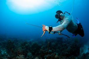 Estudio revela discapacidad en pescadores artesanales de buceo