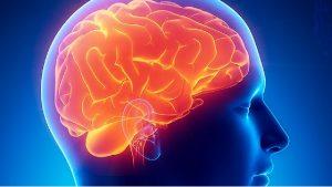 Amadita Laboratorio presenta panel detección del Alzheimer