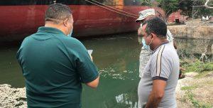 Profundizan investigación sobre peces muertos muelle Barahona